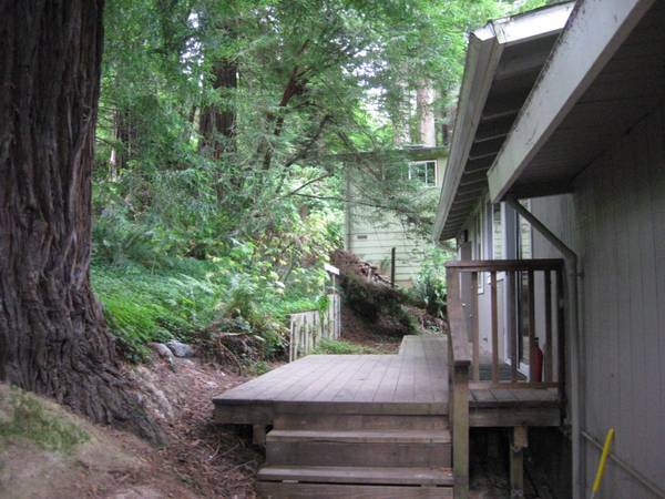 Home In The Redwoods